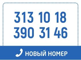 Новый телефон: 313 10 18,  390 31 46